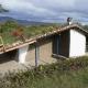 Зеленая крыша. Такая крыша лучше будет ударживать тепло зимой, а летом прошладу в доме