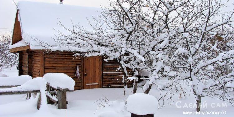 Что нужно сделать садоводу в январе? Полный список!