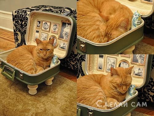 спальное место для кошки своими руками
