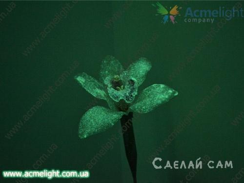 Цветок светящийся в темноте