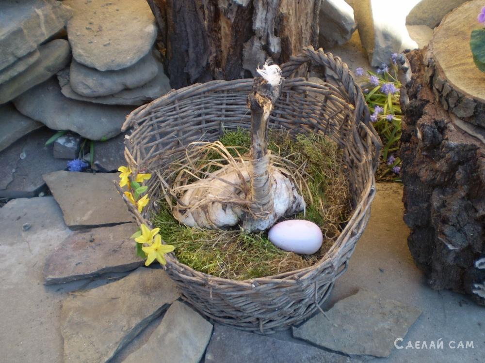 Страус и яйцо