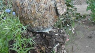 Гипсовая сова Сплюшка