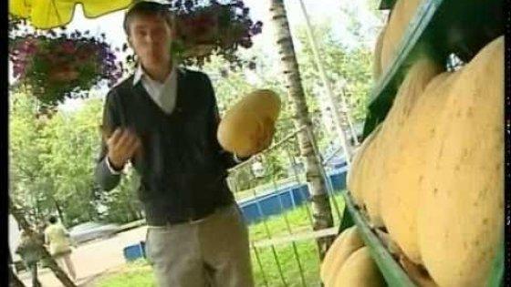 Как выбрать спелый арбуз или дыню без нитратов.